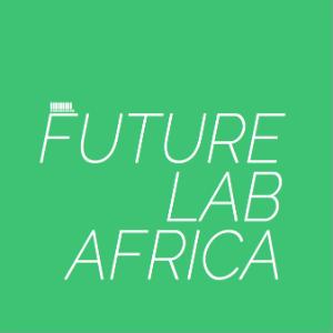 Future Lab Africa art